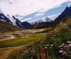 Faairy Meadows and Hushe Gondogoro La Trek (2)
