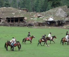 Fairy Meadows and Hushe Gondogoro La Trek (5)