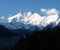 Fairy Meadows and Hushe Gondogoro La Trek (7)