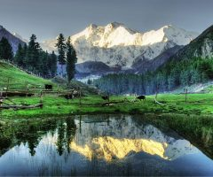 nanga-parbat-seen-from-fairy-meadows1