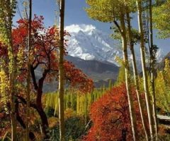 a-beautiful-view-of-mount-rakaposhi