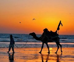 a-man-with-his-camel-during-sunset